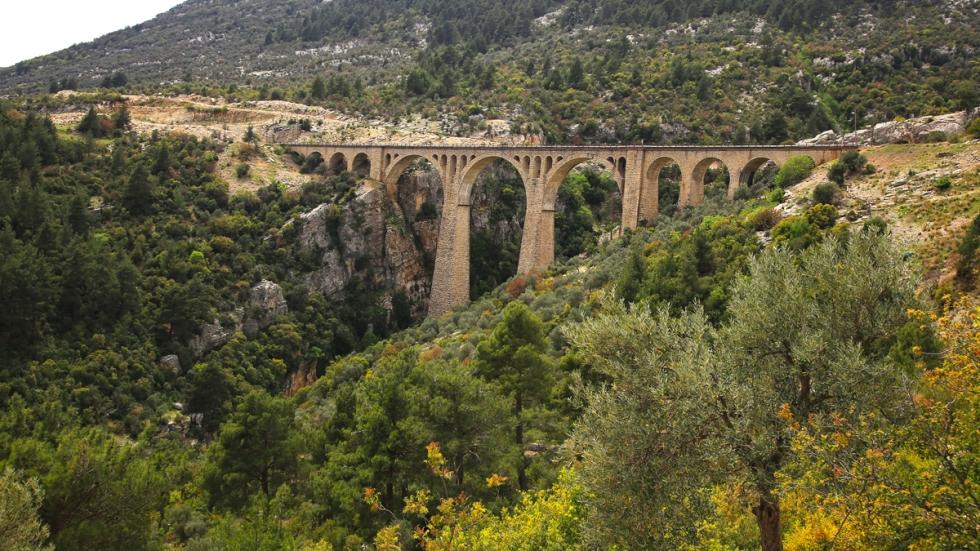 Varda Köprüsü_Yeşille bezeli