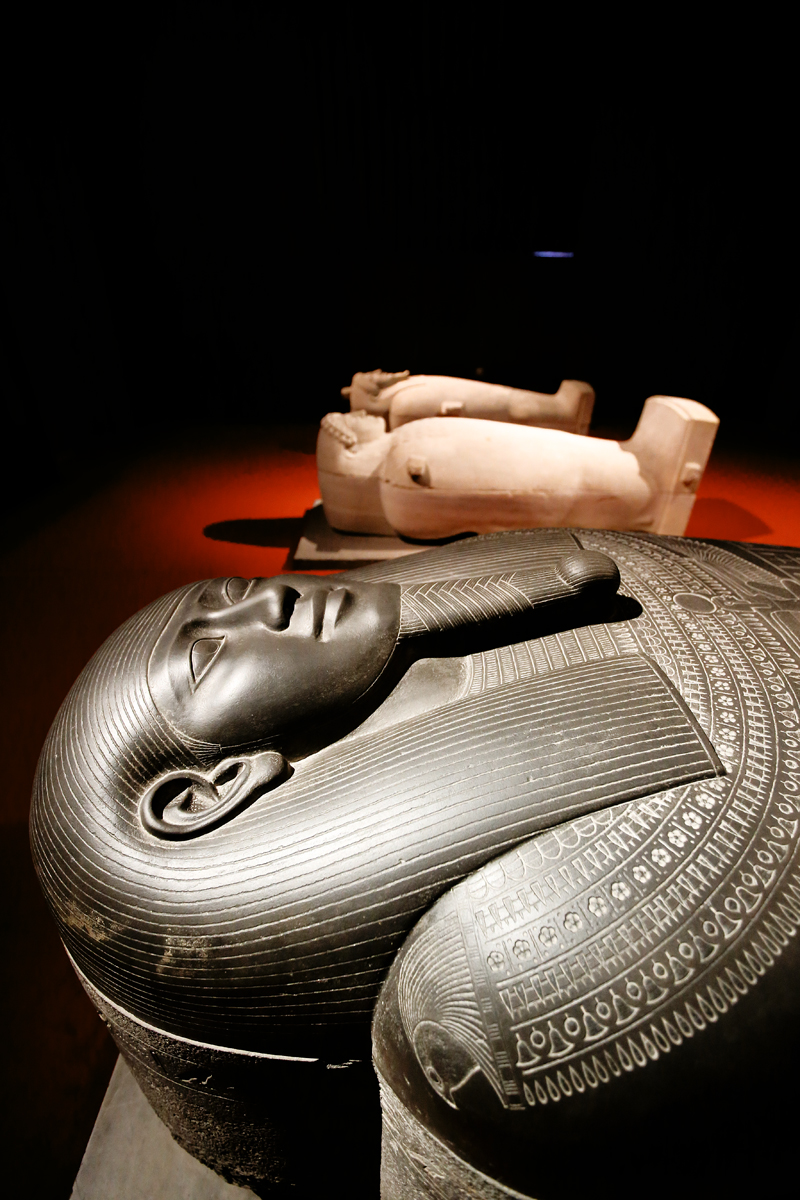Istanbul Archaeology Museum & Istanbul Modern Museum...